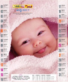 AP Calendar-01-01-2017 to 31-12-2017