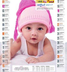 TS Calendar-01-01-2017 to 31-12-2017