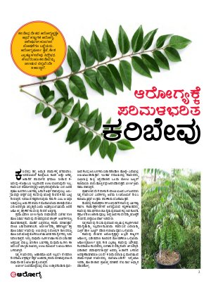 eArogya (Health)-18 january 2017