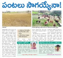 Medak District-30-03-2017