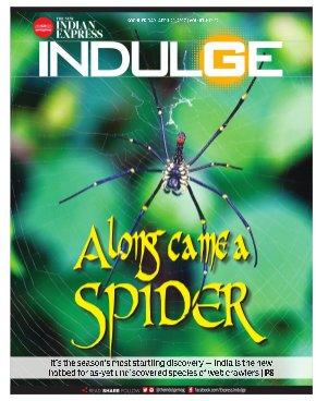 Indulge - Kochi-21042017