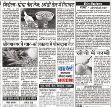 Vyapar Kesari Hindi Daily News Paper-19 August 2017