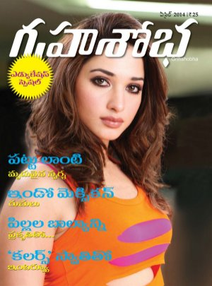 Grihshobha Telugu-April 2014
