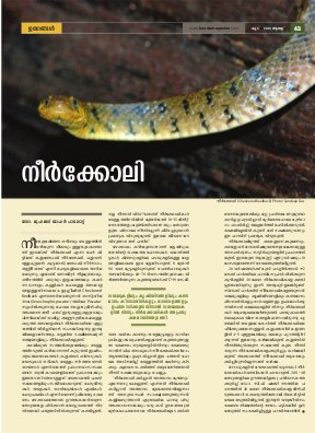 Koodu Magazine-Issue 16, August 2014