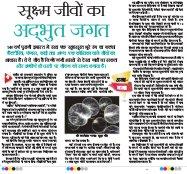 The Navodaya Times Magazine -The Navodaya Times Magazine
