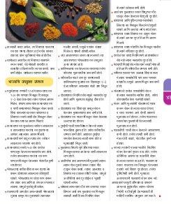 सकाळ साप्ताहिक-Sakal Saptahik 22 November 2014