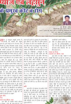 Hindi Magazine-JANUARY-2015-Hindi Magazine