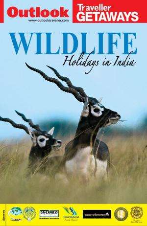 Outlook Traveller Getaways - Wildlife Holidays in India